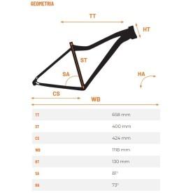 rower elektryczny Overfly Zing specyfikacja
